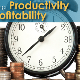 Transforming Productivity into Profitability