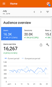 iPhone content - Google Audience Overview